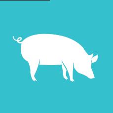 crate free-raised pork